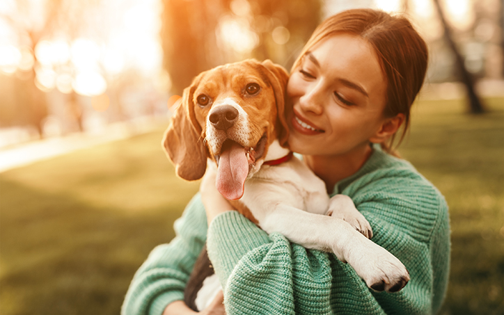 Facts Every Pet Parent Should Know About Heartworms, Fleas, & Ticks